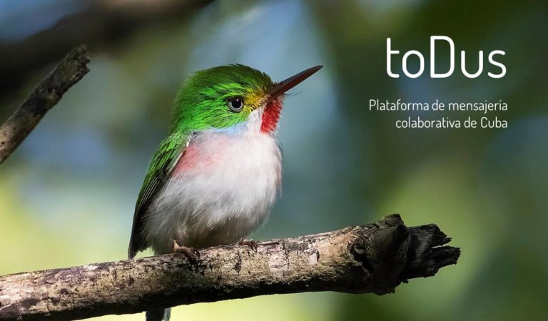 ToDus: Historia de un romance, distanciamiento y posible reencuentro